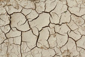 Grunge mud cracks texture — Stock Photo
