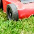 Lawnmower on grass — Stockfoto