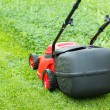 New lawnmower on green grass — Stock Photo
