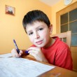 Stock Photo: Boy doing school homework