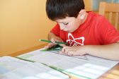 Boy doing school homework — Stock Photo