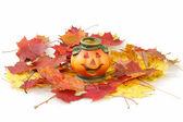 Halloween Pumpkin Lantern — Stock Photo