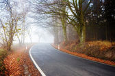 Road going in to the fog — Stock fotografie