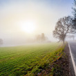 Rural foggy road going to the sunrise — Stock Photo #36316961
