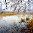The cool autumn morning at the pond — Stock Photo