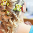 Beautiful wedding hairstyle - rear view — Stock Photo
