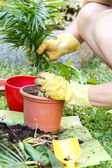 Gardening with rubber yellow gloves — Stock Photo