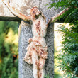 Crucifixion, Jesus Christ on the cross — Stock Photo