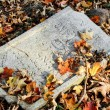 Damaged tomb in forgotten and unkempt Jewish cemetery — Stockfoto #36885123