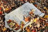 Damaged tomb in forgotten and unkempt Jewish cemetery — Stock Photo