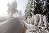 Winter Road going in to the fog — Stockfoto