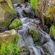 Falls on the small mountain river in a wood — Stock Photo #43192559