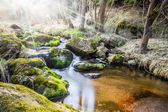 Falls on the small mountain river in a wood — Stock Photo