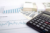 Czech money, calculator and charts — Stock Photo