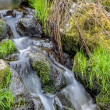 Falls on the small mountain river in a wood — Stock Photo #44116069