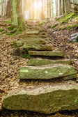 Stone staircase leading up with sunlight — Foto de Stock