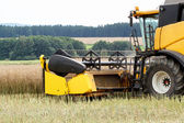 Combine harvesting rape — Stock Photo