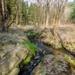 Falls on the small mountain river in a wood — Stock Photo #44182053
