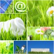 Environment and green energy concept — Stok fotoğraf