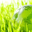 Glass earth in grass — Stock Photo