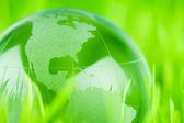 Glas jorden i gräs — Stockfoto