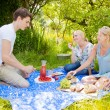 Summer picnic — Stock Photo