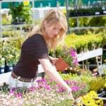 Pretty blond woman in gardening center — Stock Photo #2948655