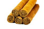 сигары — Стоковое фото