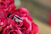 δαχτυλίδι αρραβώνων — 图库照片