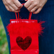 Royalty-Free Stock Photo: Hands holding gift bag