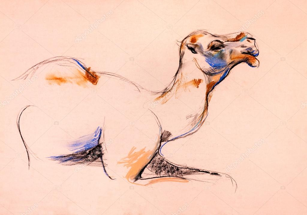 Old,grunge original pastel and  hand drawn, working  sketch of a camel.Free composition — Stock Photo #12907182
