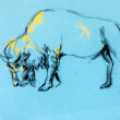 Buffalo painting — Stock Photo