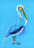 Sketch of a pelican — Stock Photo