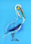 Sketch of a pelican — Stock Photo
