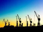 Harbor cranes — Stock Photo