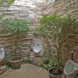 Toilet with garden style — Stock Photo