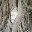 Stock Photo: Buddhhead in roots of overgrown fig tree in ayutthayh