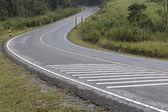 S curve road — Stock Photo