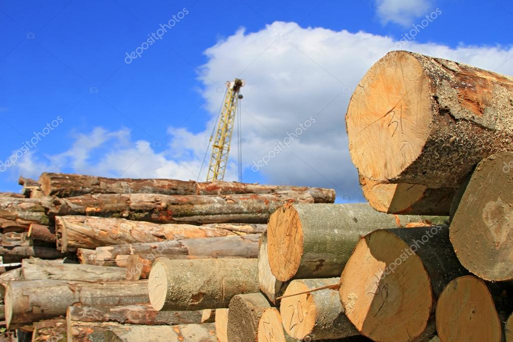 Preparation and wood warehousing in an industrial landscape.  Stock Photo #12725880