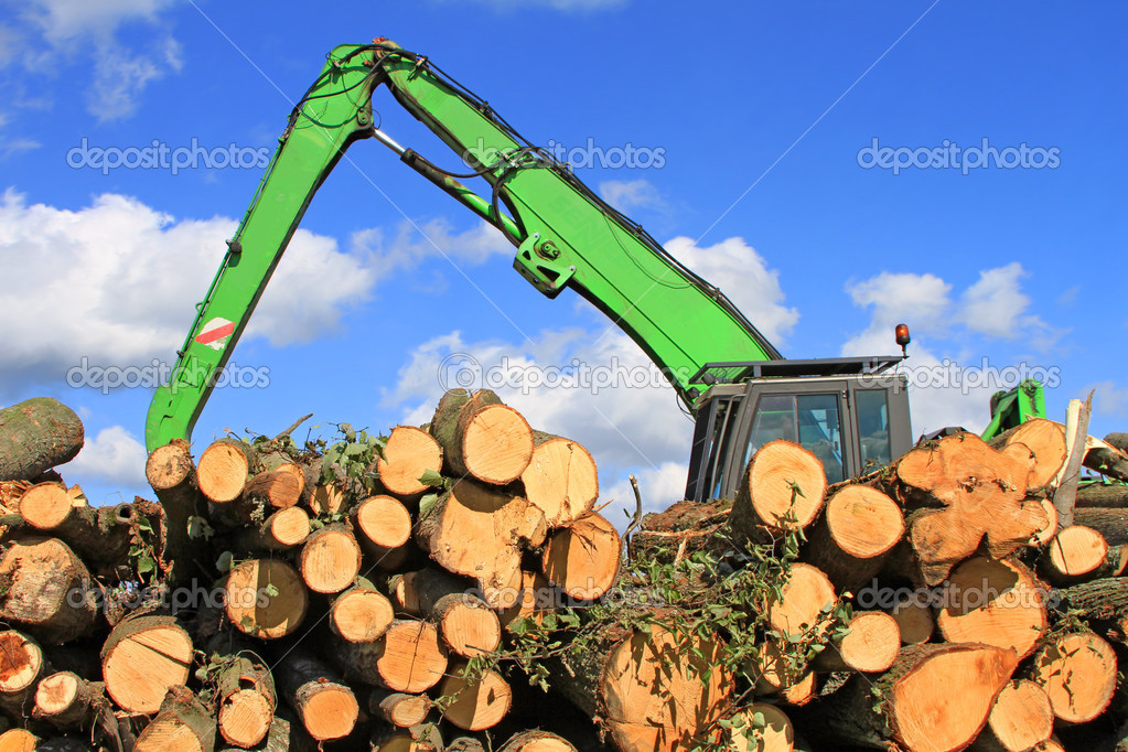 Preparation and wood warehousing in an industrial landscape.  Stock Photo #12725881