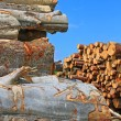 Wood preparation — Stock Photo #13153373