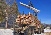 Préparation du bois — Photo