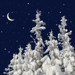 Firs under snow against the night sky with the moon. — Stock Photo #18759517