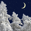 Firs under snow against the night sky with the moon. — Stock Photo