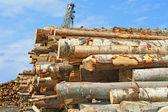 Preparação de madeira — Fotografia Stock