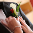 Stock Photo: Pinning boutonniere