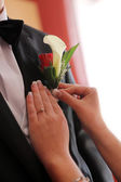 Pinning boutonniere — Stock Photo