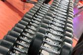 Halters gewichten opgesteld in een fitness-studio — Stockfoto