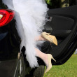 Newlyweds loving in the car after wedding ceremony — Stock Photo