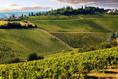 Hills of Tuscany With Vineyard In The Chianti Region — Stock Photo